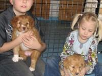 Fia med sin syster Vinga och våra barnbarn Tobias och Hanna