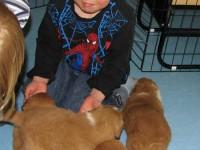 Barnbarn på besök 090327