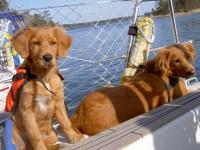 Lova och Qia på båten.